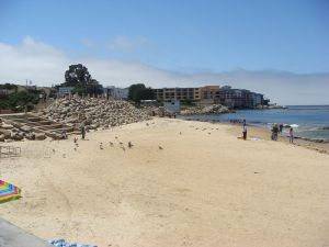 monterey-bay_beach